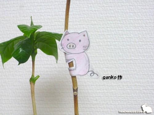 豚はganko作