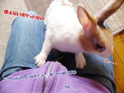 ぷりん恐い03