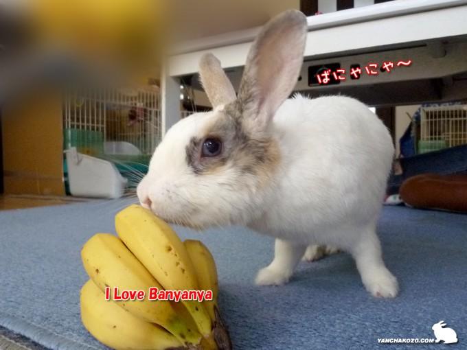 バナナ一房プレゼント!