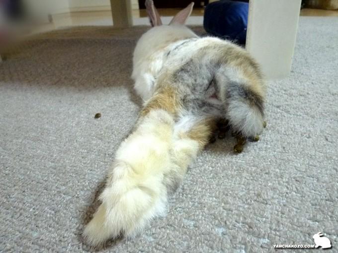 足も見てね!
