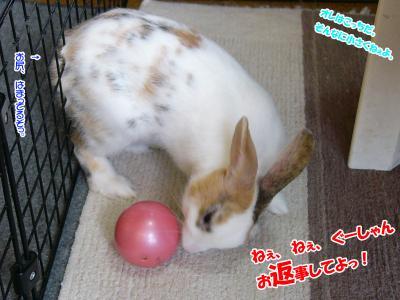 ぷりんボール02