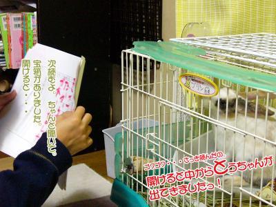 ぷりん紙芝居03