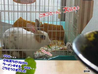 ぷりん小松菜