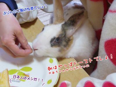ぷりんパン食べる02