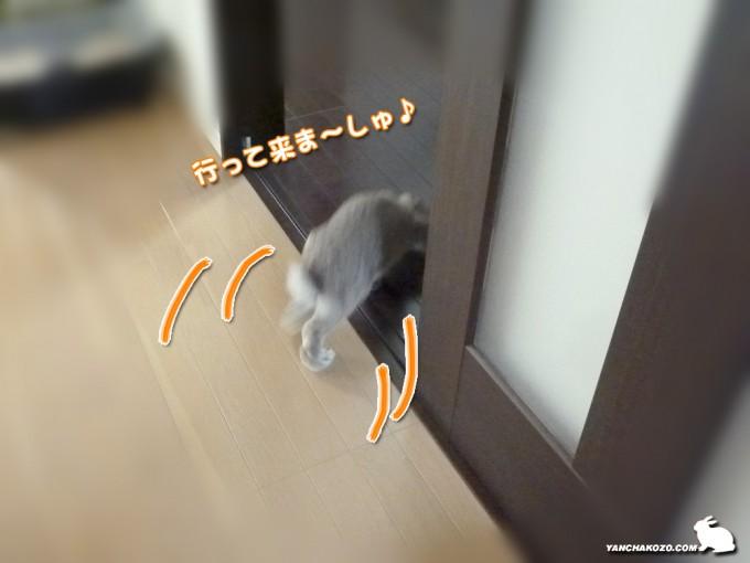 たるち、廊下へ