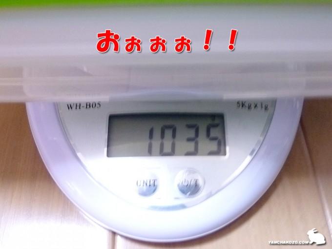 トフィの体重