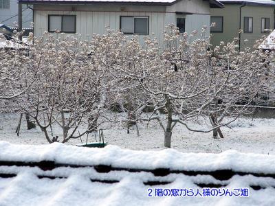 雪積もった02